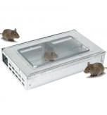 Live Catch Multi Mouse Trap - Large