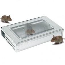 Live Catch Multi Mouse Trap - Large