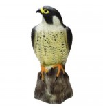 Decoy Standing Falcon