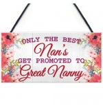 FOAM PLAQUE - 200X100 - Best Nans Promoted To Great Nanny
